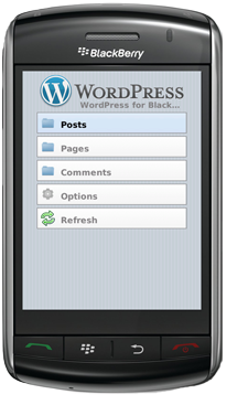 wordpress-berryapp
