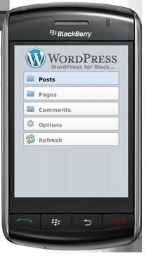 wordpress-berryapp